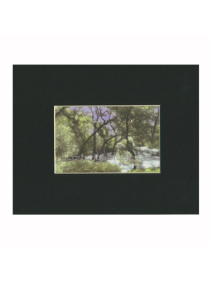 mystical forest matted print
