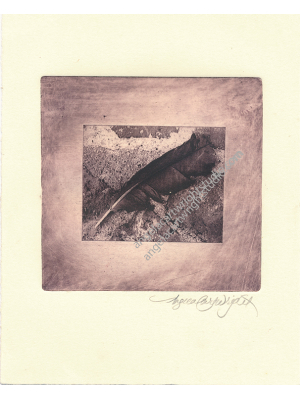 Feather etching #113