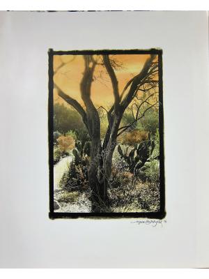 Desert Opus - hand-painted photograph