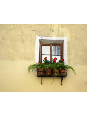 Austrian window